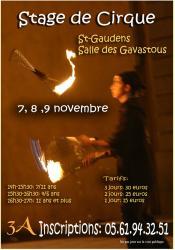 affiche-stage-cirque-nov.jpg