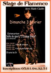 affiche-stage-flamenco-copy-1.jpg