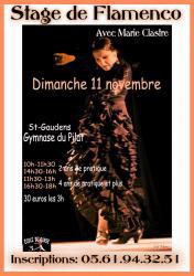 affiche-stage-flamenco.jpg