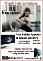 Affiche stage juillet 2014 copy 2