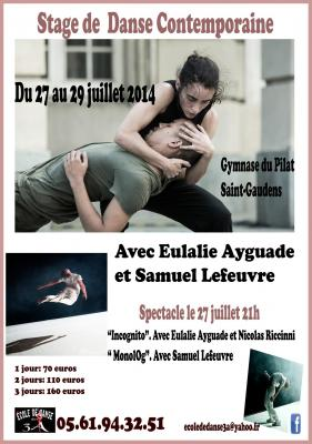 Affiche stage juillet 2014 copy