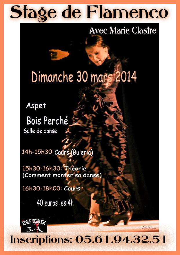 Affiche stage flamenco copy