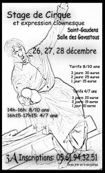 stage-cirque-decembre-2012.jpg