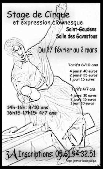 stage-cirque-fevrier-2013.jpg