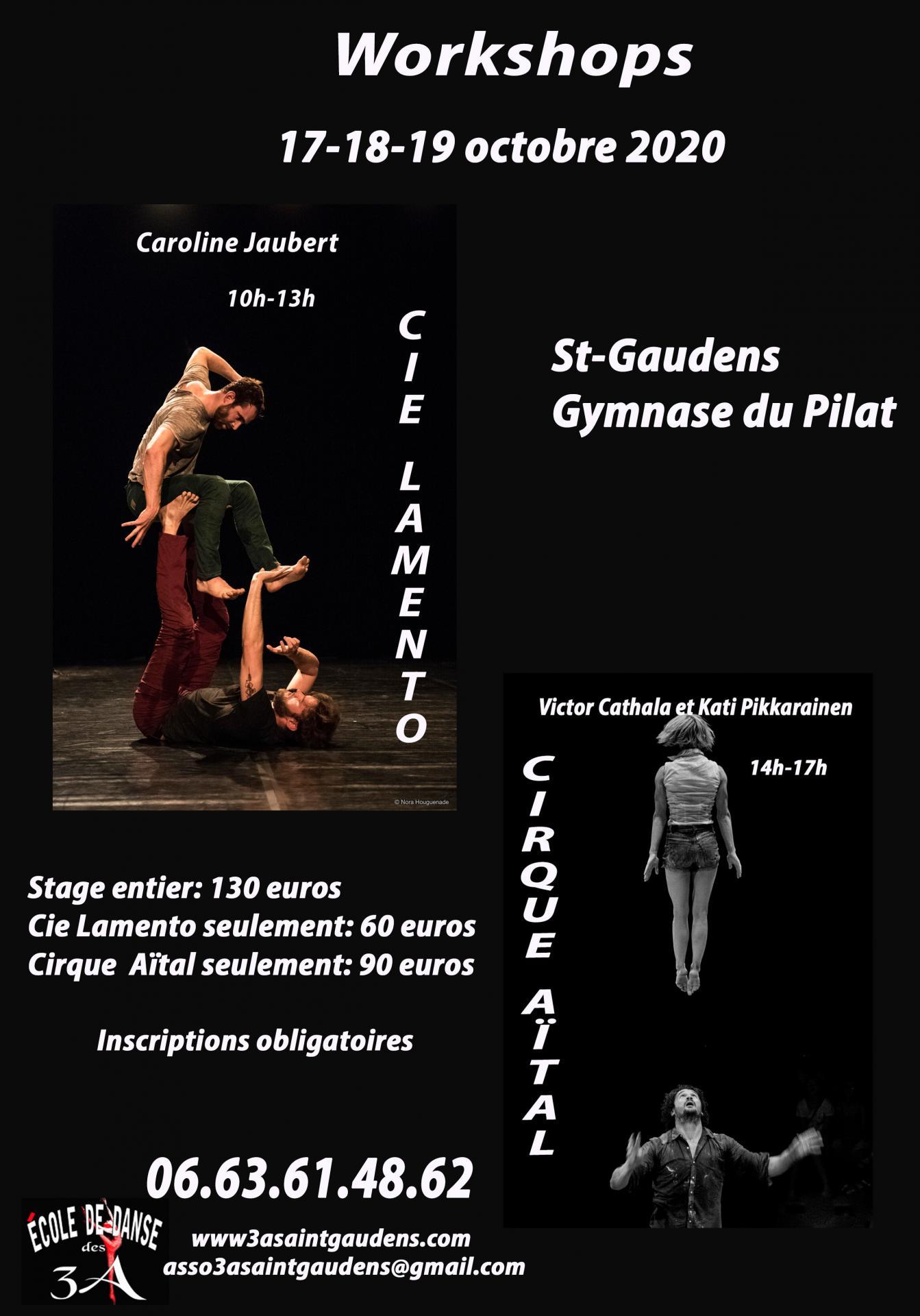 Stage octobre danse cirque